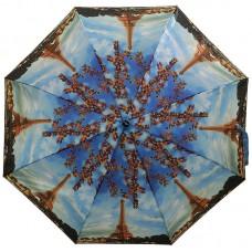 Зонт Ame Yoke OK58-9805 Париж
