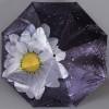 Зонт женский TRUST 30471-13 Ромашка