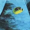 Облегченный зонт TRUST FASML-21lux Подводный мир