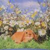 Зонт детский со светодиодами ZEST 21551-8109 Кролики