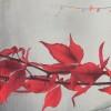 Зонт женский ZEST 23745-0025