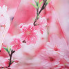 Зонт компактный полный автомат Zest 239555-55 Цветы сакуры