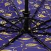 Женский зонтик с каркасом 10 спиц ZEST 23968-269