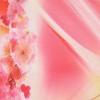 Тоненький зонтик Zest от дождя 537622-81311 Цветочки по канту